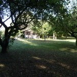 huge fully maintained garden and orchard , student house, Kenilworth,